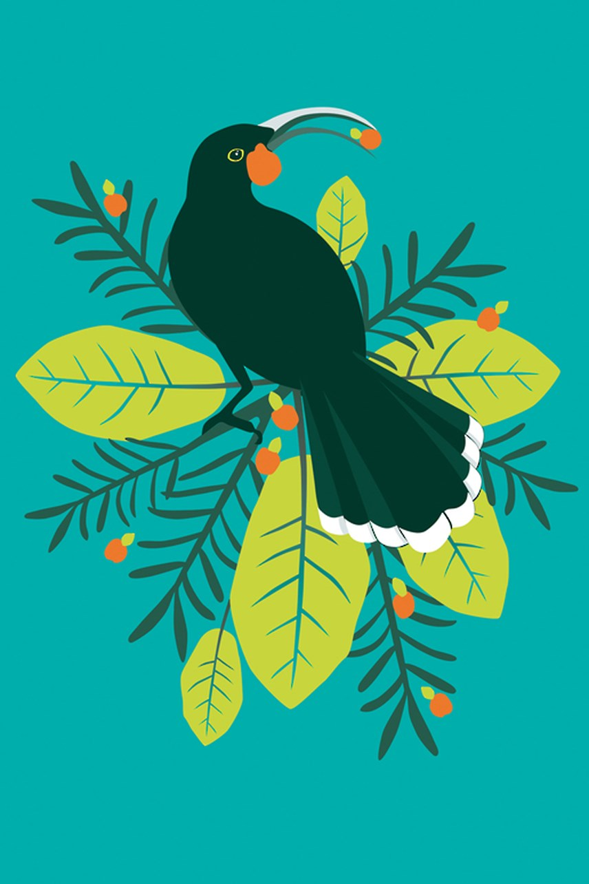 Birds Of A Feather Huia Card