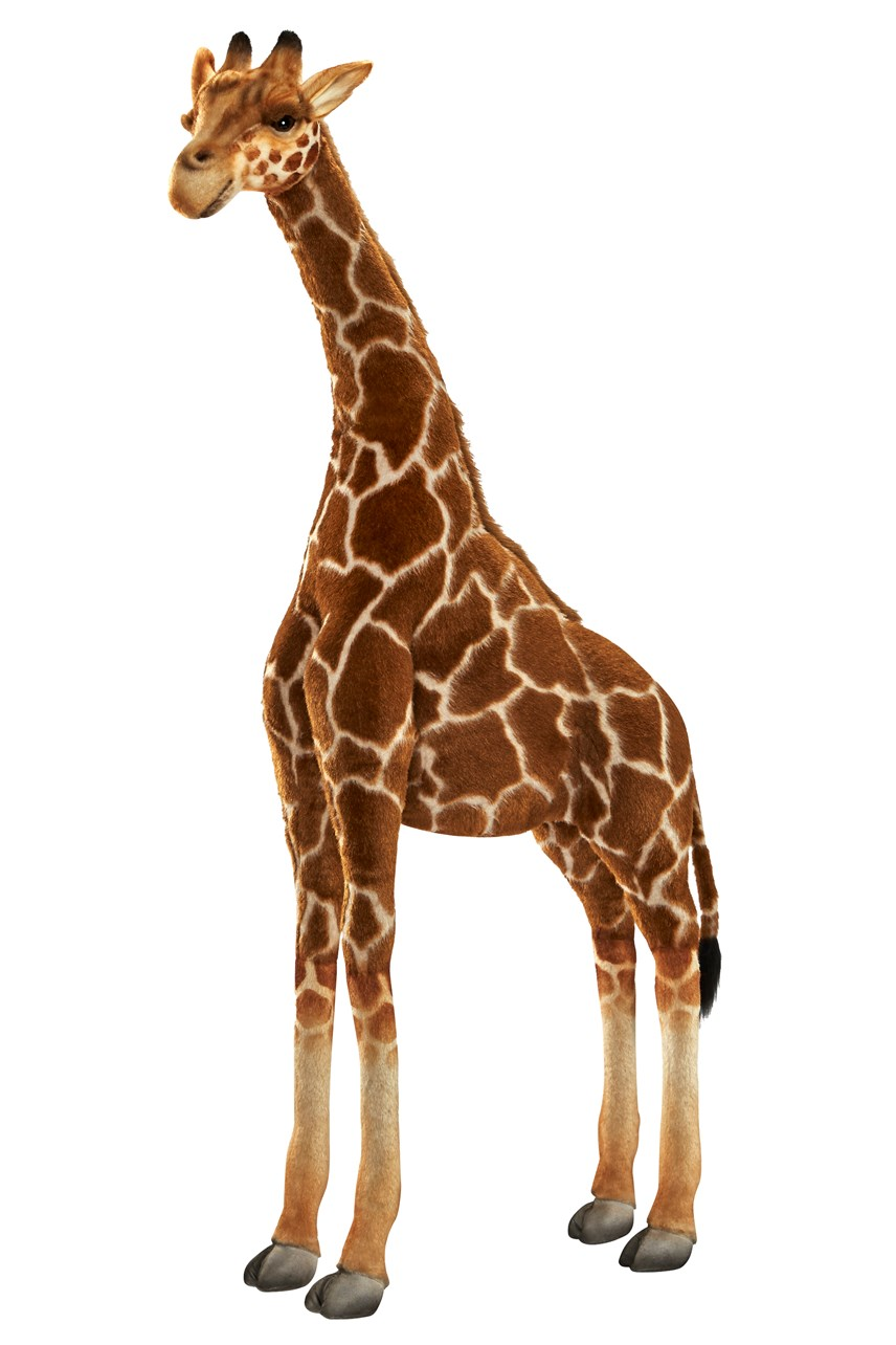 Giraffe 130cm Height