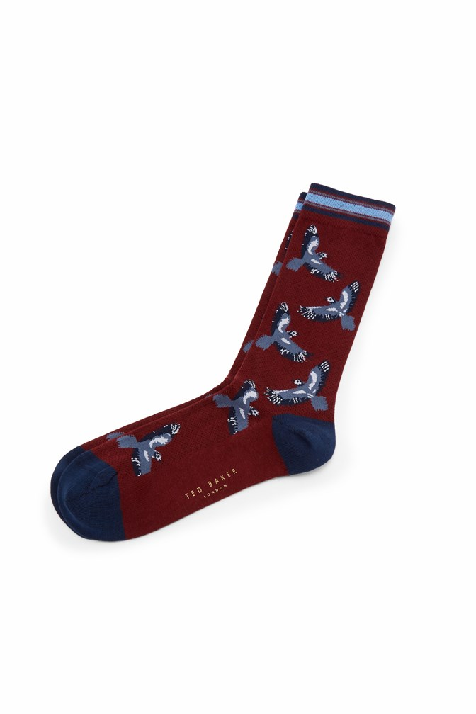 Kaami Bird Print Sock