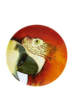 'Olhar o Brasil' Red Macaw Charger Plate 1