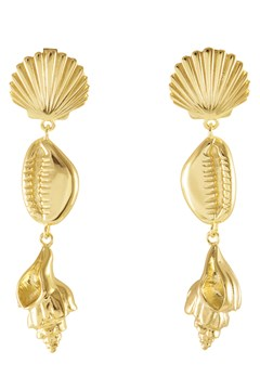 Como Shell Gold Earrings GOLD 1