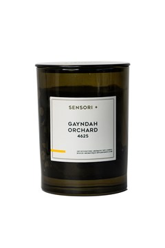 Gayndah Orchard Air Detoxifying Aromatic Soy Candle 1