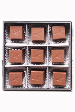Mangawhai Sea Salt Caramels in Milk Chocolate -