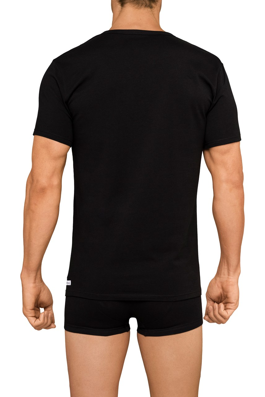 Cotton Stretch V-Neck T-Shirt 2-Pack