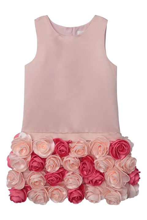 Once Upon A Rose Dress - 45s