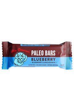 Blueberry Paleo Bar 1