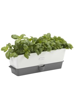 Triple Self Watering Herb Keeper 1