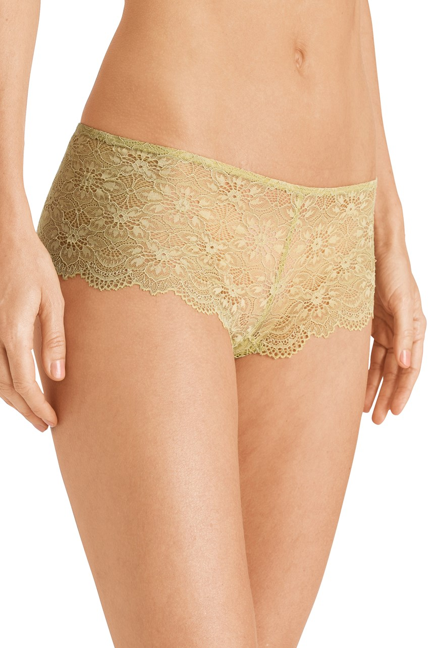 Aria Boyleg Brief