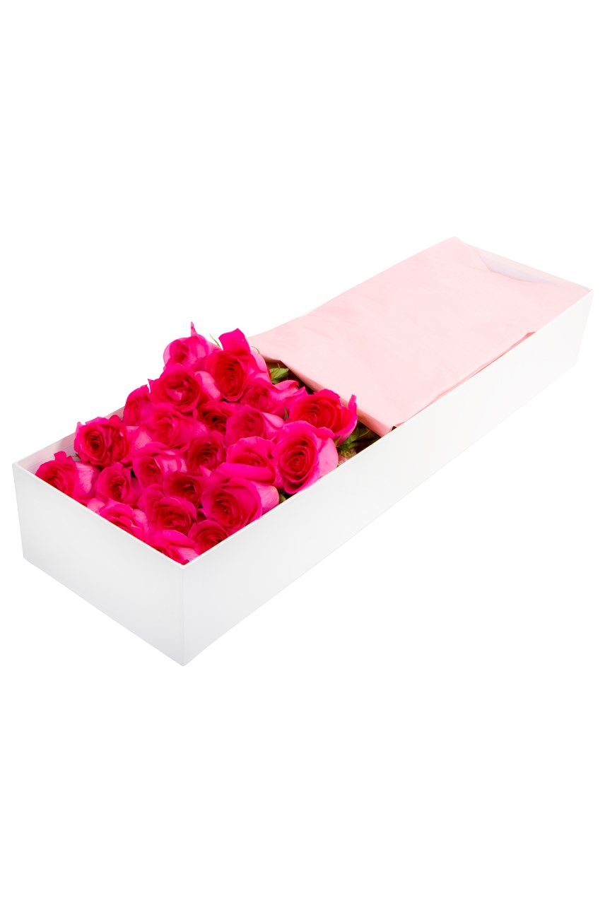 24 Boxed Pink Roses