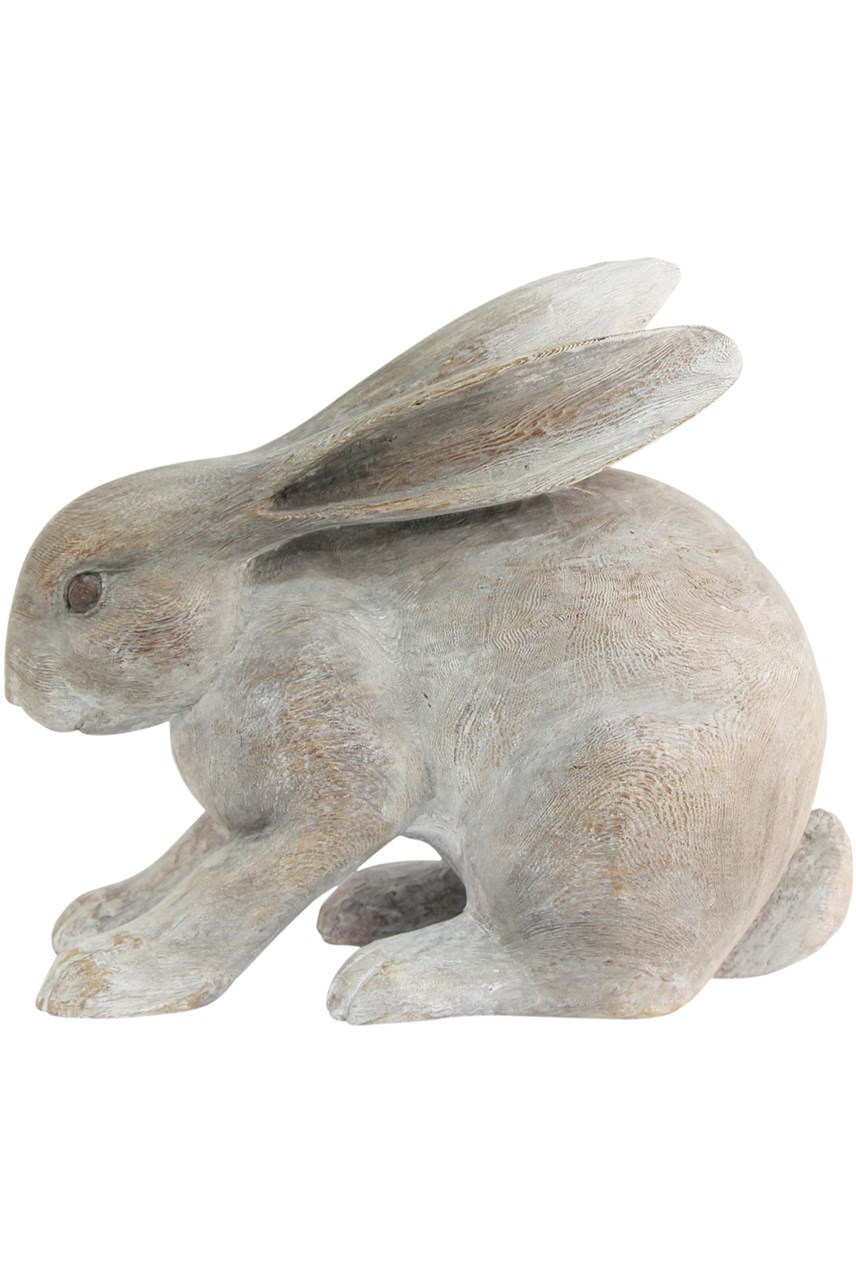 Potter Rabbit Crouching