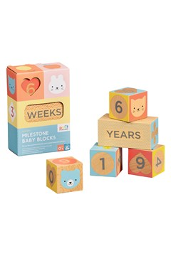 Wooden Baby Milestone Blocks 1