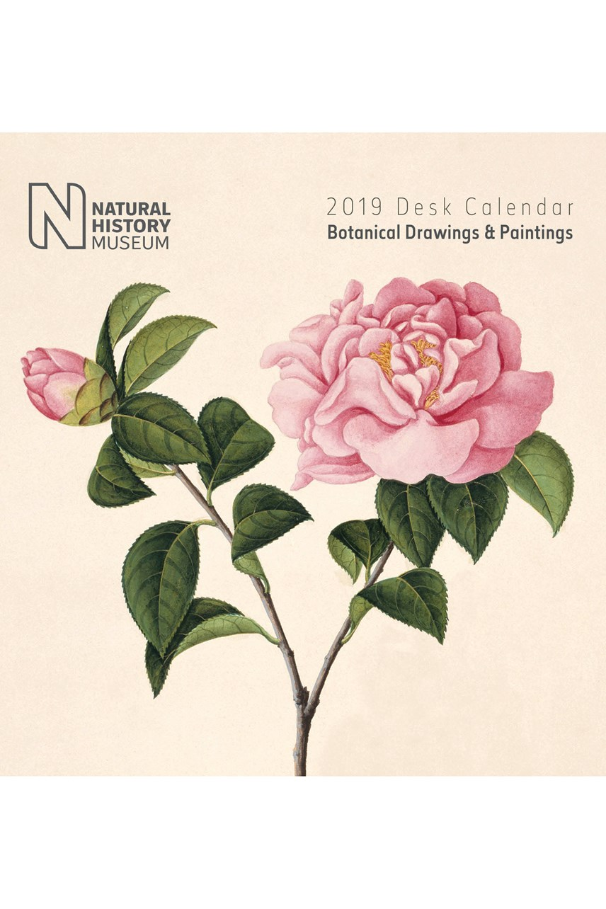 Botanical Desk Calendar 2019