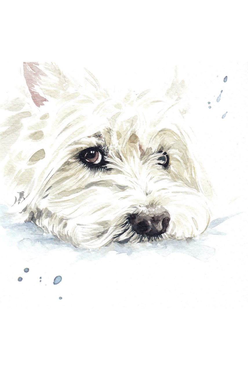 White Terrier Card