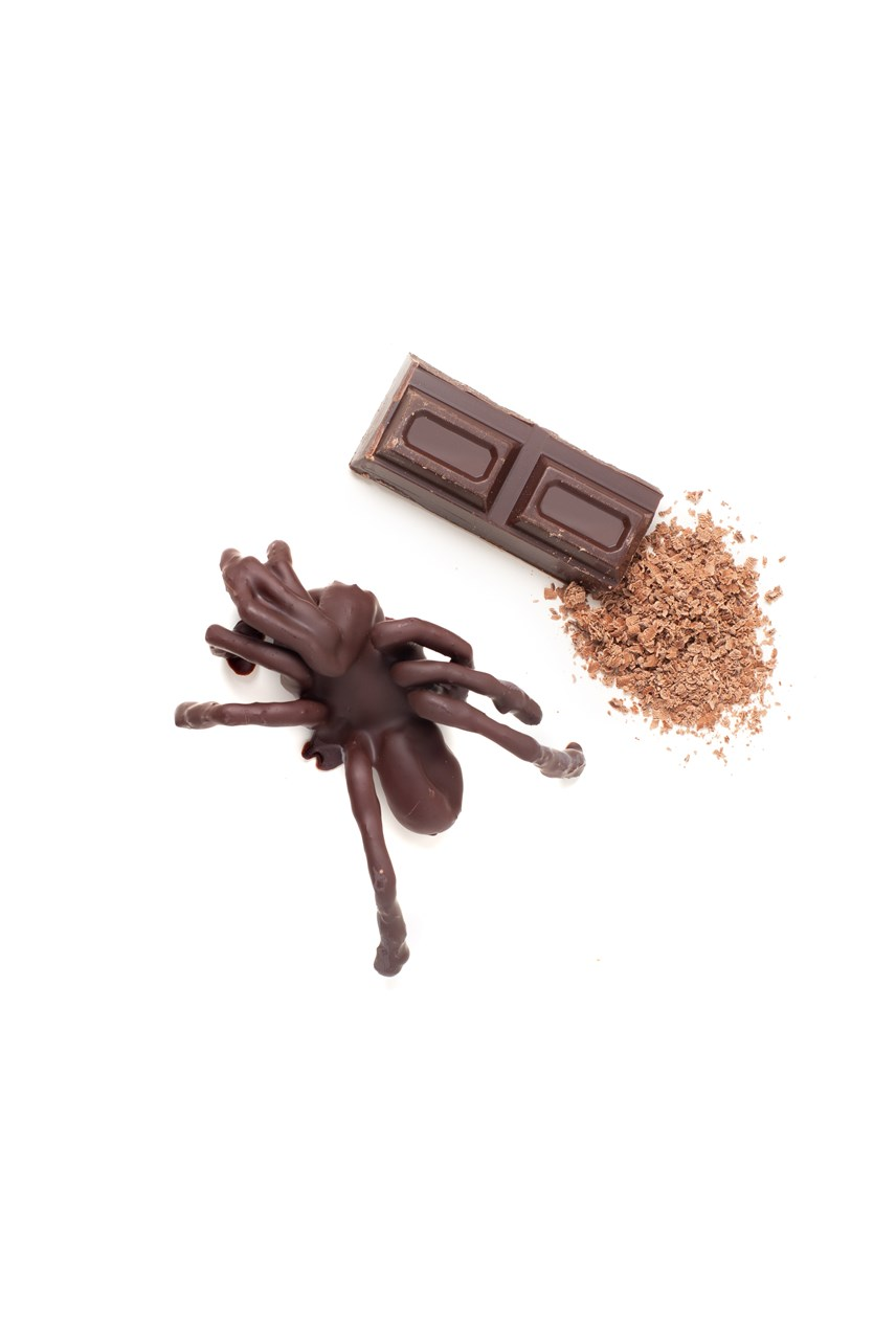Chocolate Coated Tarantula