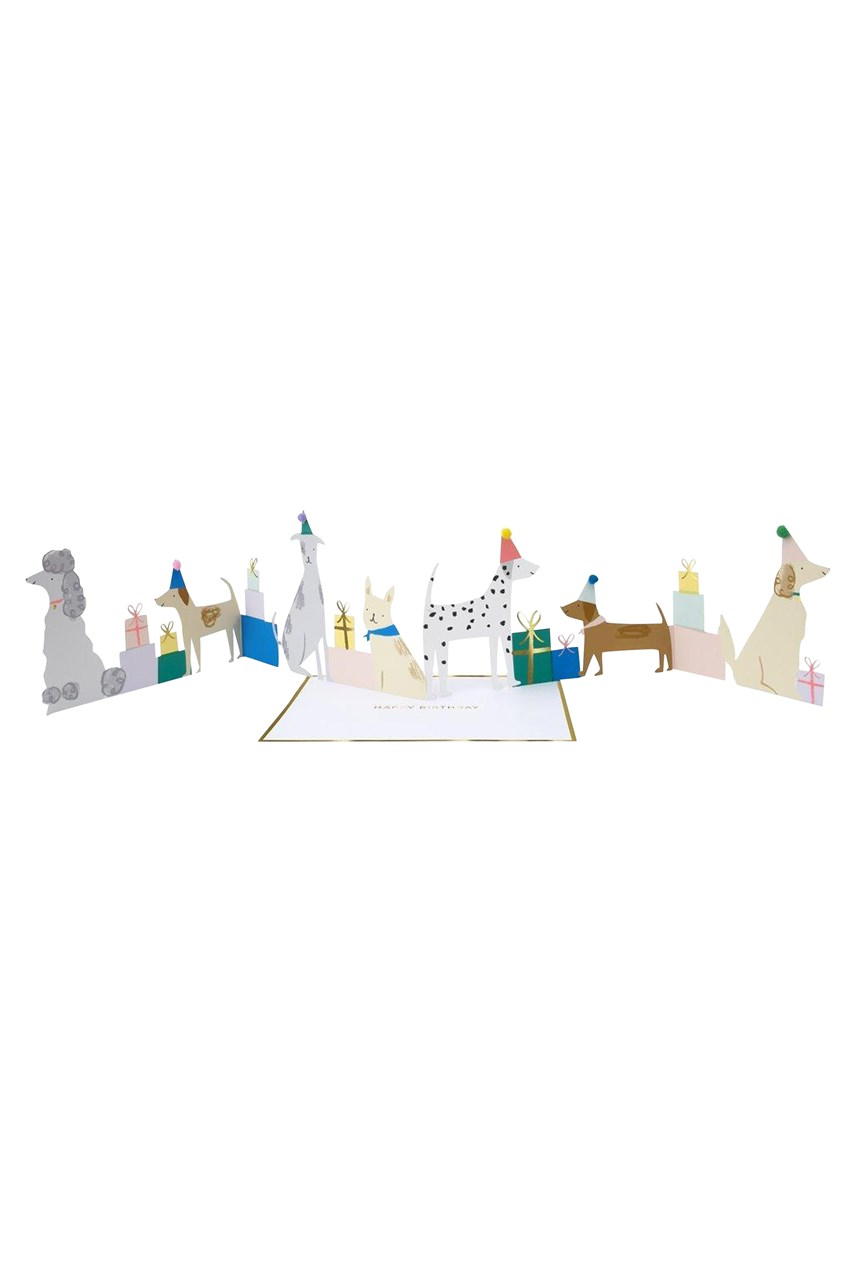 Dog Party Concertina Card