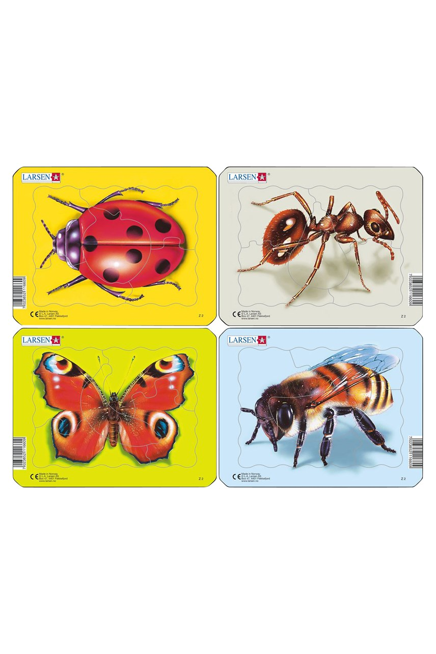 Insects Puzzle