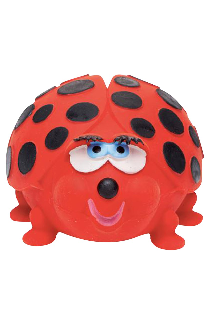 Ladybird Bath Toy