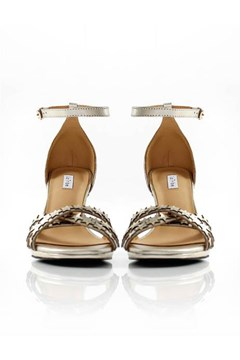 Star Heel - gold