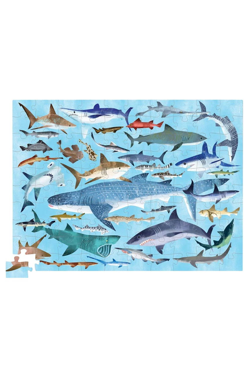 Sharks Puzzle - 100 Piece