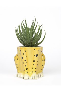 Urban Jungle Cheetah Plant Pot -
