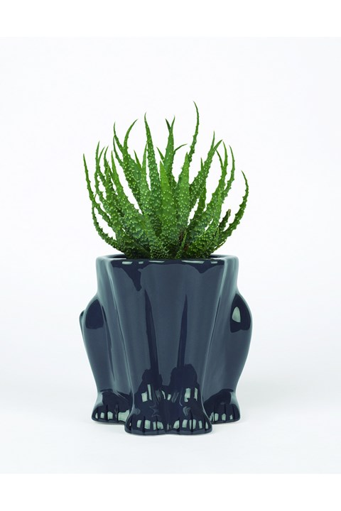 Urban Jungle Panther Plant Pot -